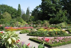 hotel-cerise-nancy-musee-jardin-botanique-du-montet.jpg
