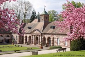 Photo_Office_de_tourisme_Luxeuil_ Vosges_du_Sud.jpg